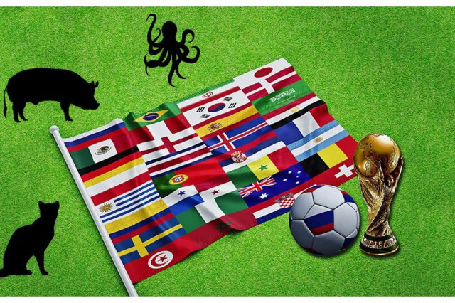 FIFA World Cup Psychic Animals