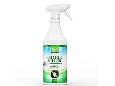 bed-bug-killer-from-eco-defense