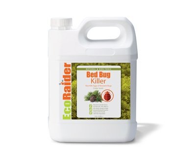 eco-raider-bed-bug-killer