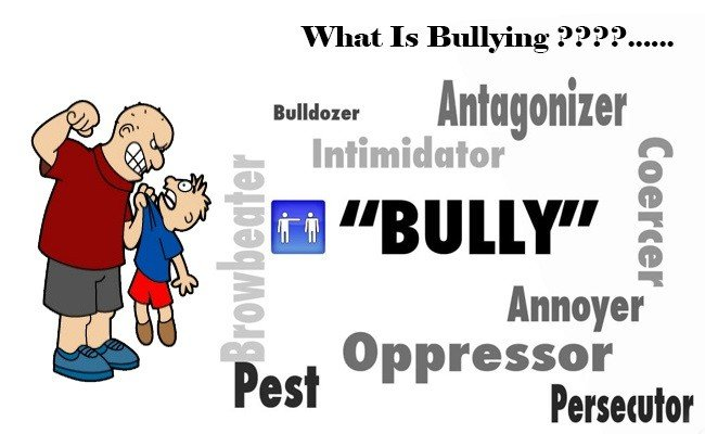 what-is-bulling