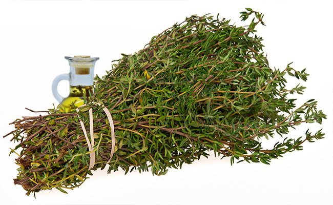 thyme-essential-oils-for-hair-growth