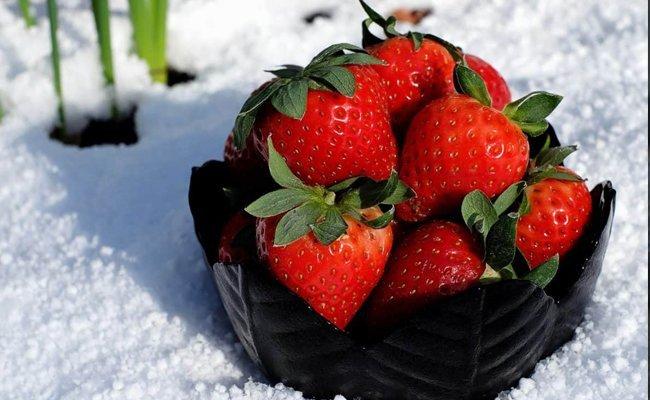 berries - Foods That Stimulates The Nervous System And Brain
