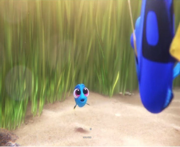 finding-dory - Funny Movies