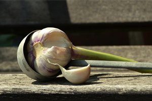 medicinal-properties-of-garlic