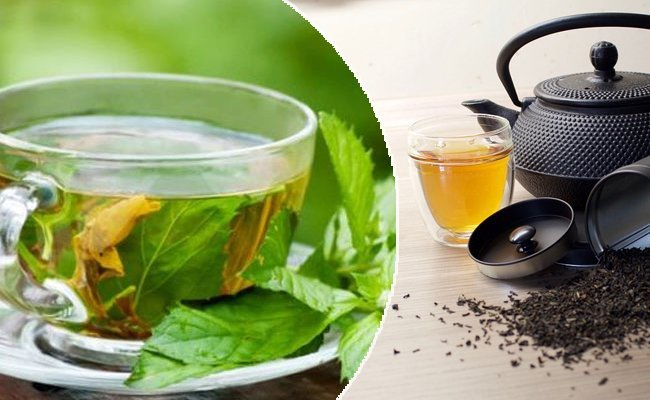 difference-between-green-tea-and-black-tea