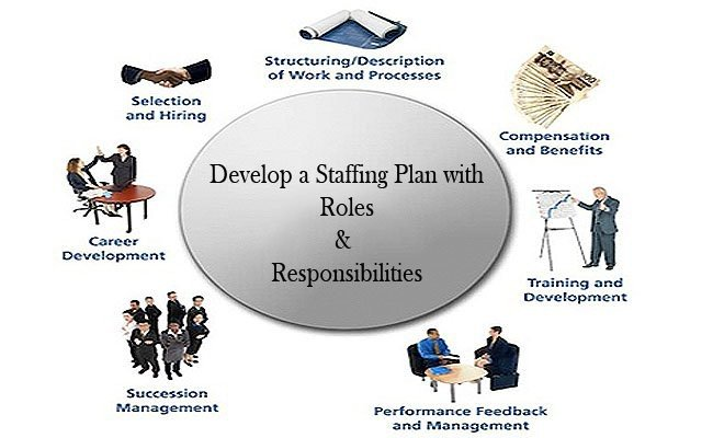 develop-a-staffing-plan-with-roles-responsibilities