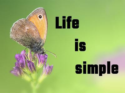life-is-simple-quotes-by-a.r.-rahman