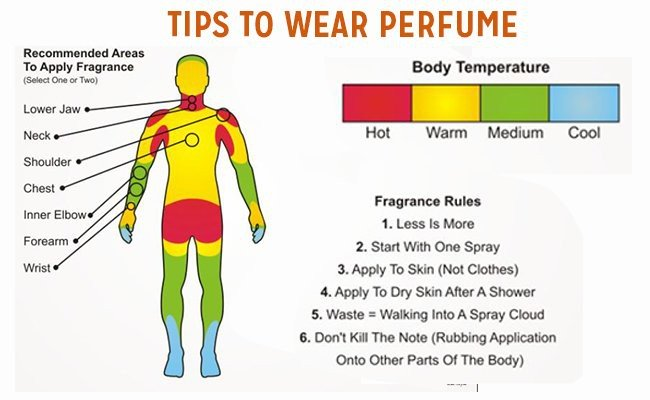tips-to-wear-perfume - How To Use Perfume?