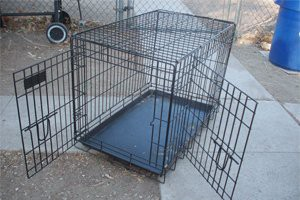 picking-the-right-crate-for-your-dog