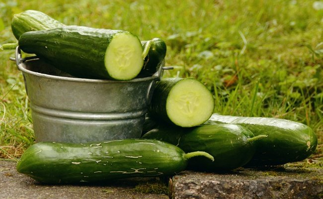 cucumber - Under Eye Dark Circles