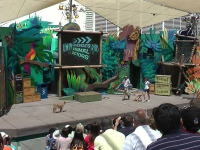 universals-animal-actor